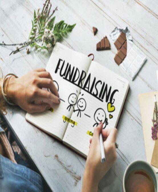 Corporate Fundraising (Online)